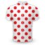 Tour de France King of the Mountains jersey icon