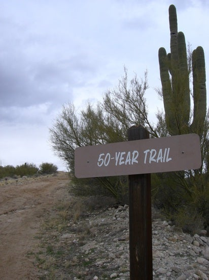 50 Year Trail in Catalina State Park. Photo by judy Freeman