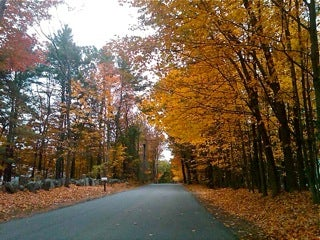 Ted King: New England in fall