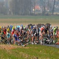 Belgian cycling chief proposes red and yellow cards to improve safety