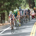 USA Cycling announces 2015 NRC and NCC schedules