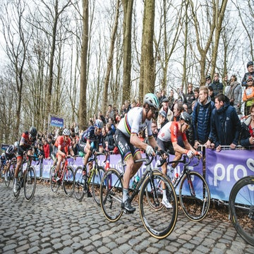 VN Show: Quick-Step gambles, but Sagan hits jackpot at Gent-Wevelgem