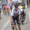Sagan Show will have co-star: Bora aims to balance GC with stages