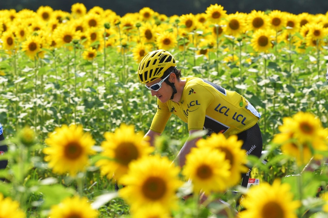 Meet the Tour de France jersey winners