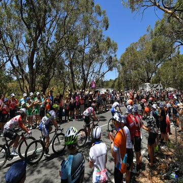 Analysis: Why the Tour Down Under works