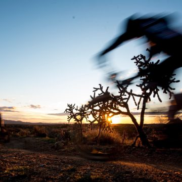 The soul of 24-hour MTB racing still blooms in the Arizona desert