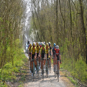 Van Aert, Jumbo-Visma prove they're prepared to animate in Flanders