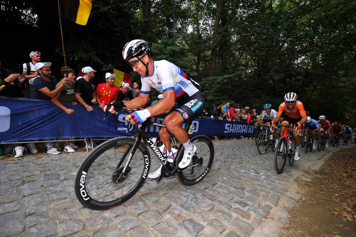 Peter Sagan on worlds: 'I didn't have the legs to win'